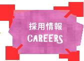 採用情報 careers